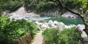 お散歩に行って吉野川の水に手をつけてみませんか?